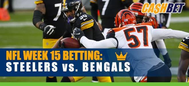 Pittsburgh Steelers vs. Cincinnati Bengals Monday Night Football NFL Week 15